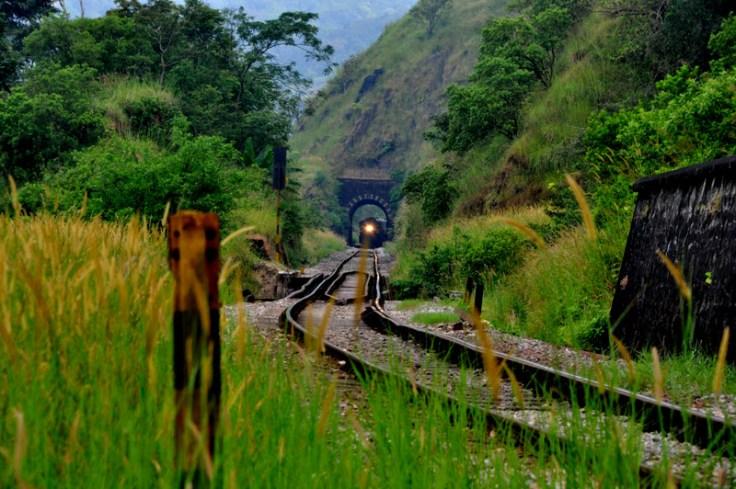 Green Route - Sakleshpur