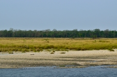 Manas river, grasslands and forest